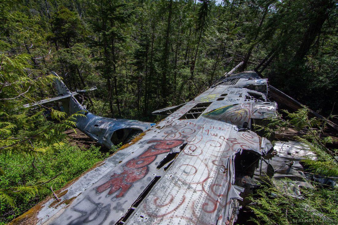 Hiking Vancouver Island - TFALKCHALMERS
